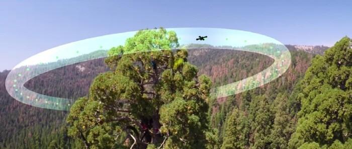 parrot_sequoia_161209_2