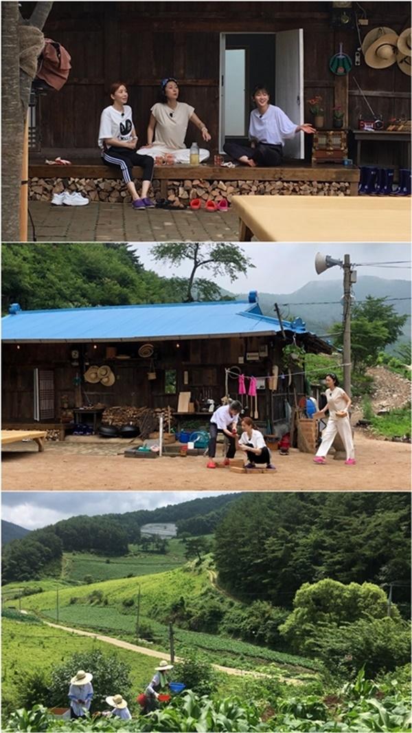 ▲ 염정아-윤세아-박소담 '삼시세끼 산촌편', 게스트는 정우성... 8월 9일 첫 방송 (사진=tvN)